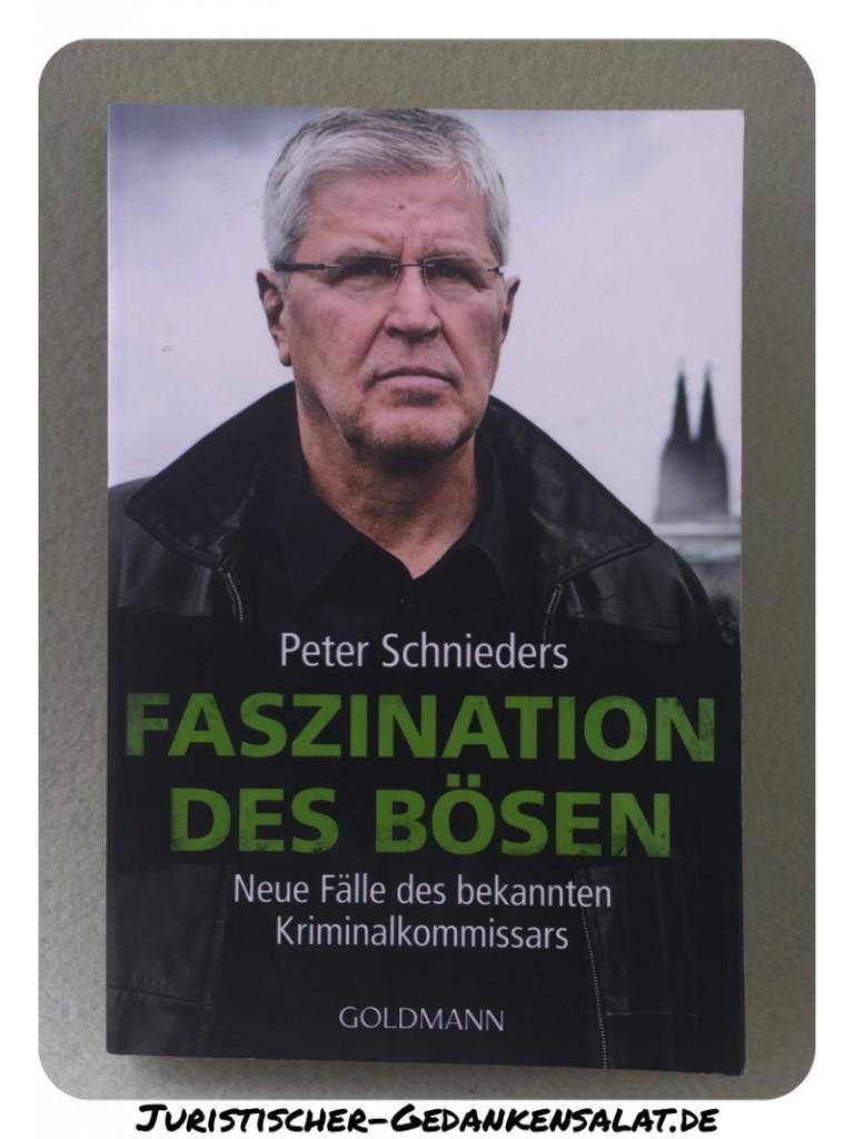 PeterSchniedersFaszinationdesBösenBuchJuristischerGedankensalatde